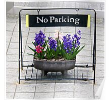 No parking sign Poster