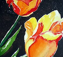 SUN-KISSED TULIPS by jyoti kumar