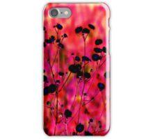 Black Susans  iPhone Case/Skin