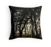 Haunting Shadows Throw Pillow