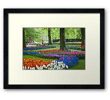 Keukenhof Gardens Framed Print