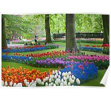 Keukenhof Gardens Poster