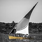 Yellow Dhow by DebbyTownsend