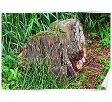 Ye Olde Rotten Stump Poster