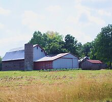 BARN OUTSIDE OF SELLERSBURG, INDIANA by Pauline Evans
