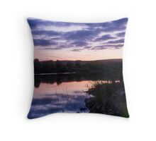 Reflections on Damflask Throw Pillow