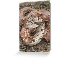 Smiling Viper Greeting Card