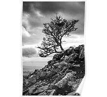Reach for the Sky, Ingleborough, Yorkshire Dales National Park Poster