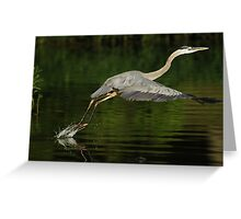 The Art of Taking Flight The Lift Greeting Card