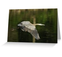 The Art of Taking Flight Leveling out Greeting Card