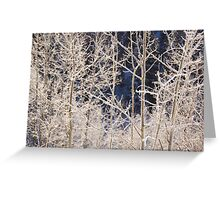 Frost Morning Greeting Card