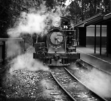 Puffing Billy - Emerald  by Christine  Wilson Photography