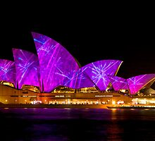 VIVID in the pink/purple by Chris Brunton