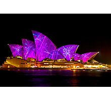 VIVID in the pink/purple Photographic Print