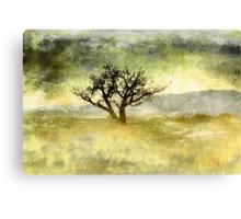 Tree at Dusk in Waikoloa 3 Canvas Print