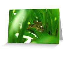 Thamnophis elegans Greeting Card