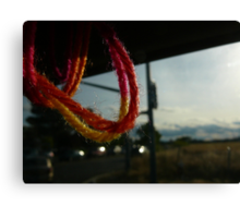 Yarn in Sacramento Canvas Print