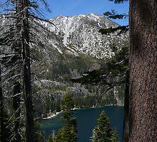 Lake Tahoe Vista by Chad Burrall