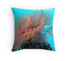 Corals - Gili Trawangan, Bali Indonesia Throw Pillow