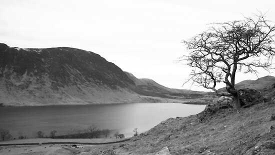 Crummock Water, Lake District National Park by Lou Wilson