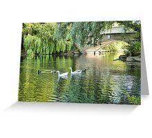 Stanley Park Boating Lake. Greeting Card