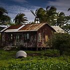 Fijian Rustic Homestead by Mandy  Harvey