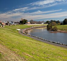 Hunter River  behind City Centre -Maitland NSW Australia by SNPenfold