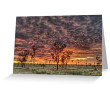 Sunset Alight Greeting Card