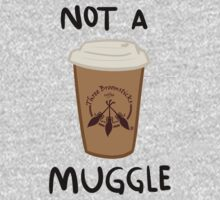 Not a Muggle by julgommar