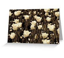 A field of frilly tulips in sepia Greeting Card