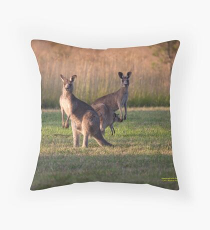 Kangaroos with Joey Late Afternoon at Vacy, NSW Australia Throw Pillow