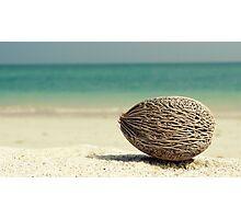 Tropical Treasure Photographic Print
