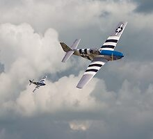 D-Day Mustangs by Pat Speirs