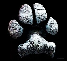Animal Lovers - South Paw Photographic Print