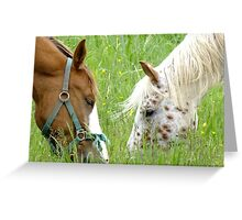 Muzzle To Muzzle Greeting Card
