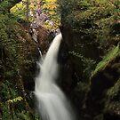 Aira Falls, Lake District, England by Steve