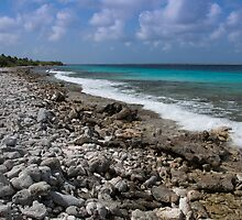 Bonaire coastline by Ralph Goldsmith