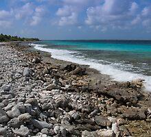 Bonaire coastline by Ralph Goldsmith