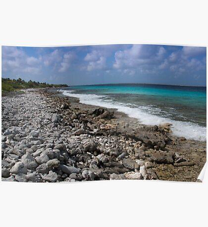 Bonaire coastline Poster
