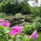 Petunias by The Pond by Barbara Zuzevich