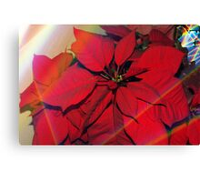 Poinsettias by stained glass windows Canvas Print
