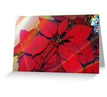 Poinsettias by stained glass windows Greeting Card