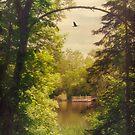 Sunny Dock by KBritt