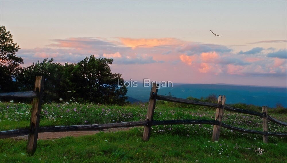 Evening Twilight Fades by Lois  Bryan