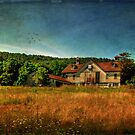 Field of Broken Dreams by Lois  Bryan