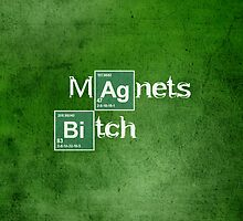 Magnets Bitch (Breaking Bad) by RetroPops