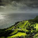 A View from the Lookout - Christmas Island by Karen Willshaw