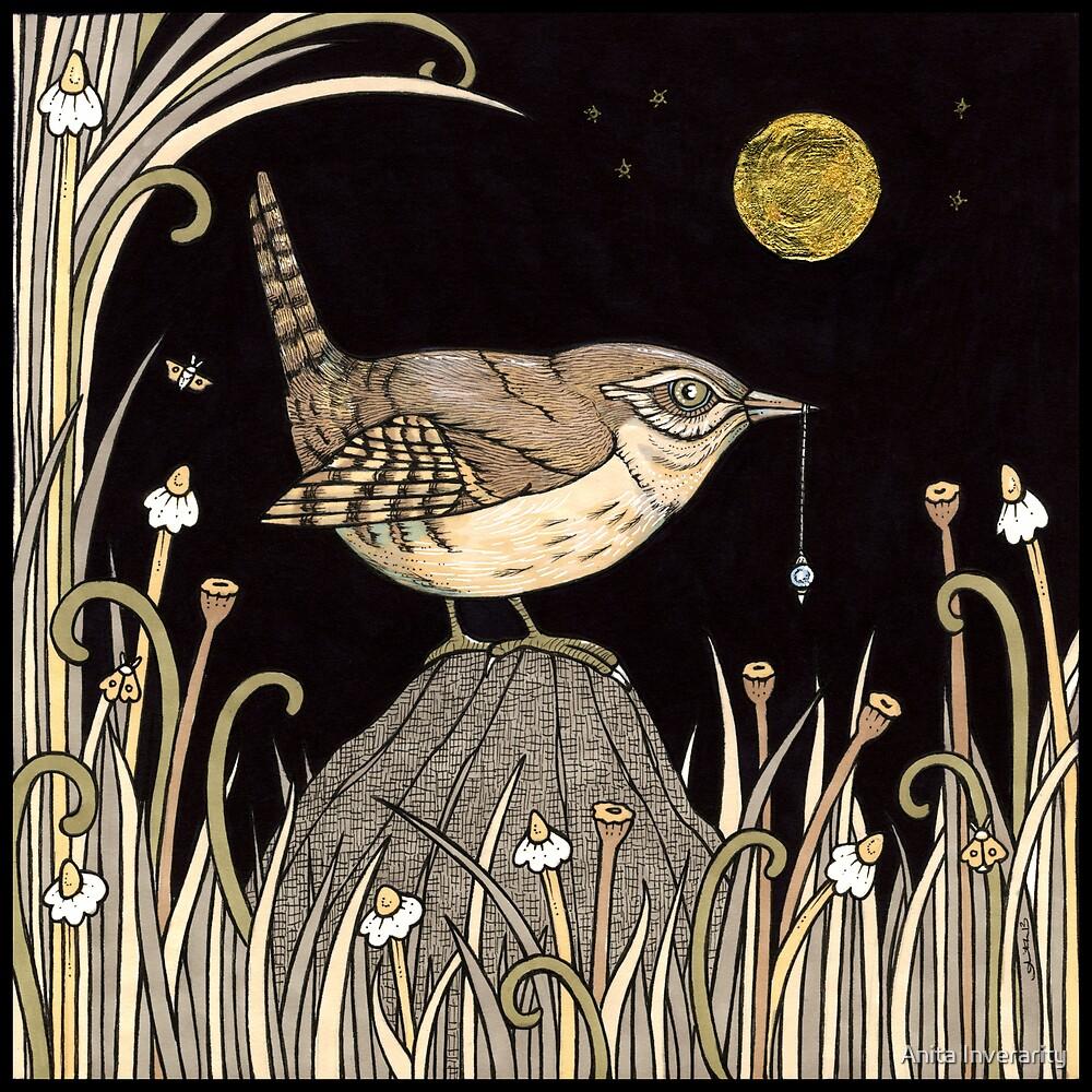 Seeking Wren by Anita Inverarity