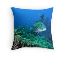 Sweet Lip - Gili Trawangan, Lombok Indonesia Throw Pillow