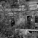 This Old House 8 Black And White Version by Barry W  King